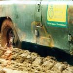 Wyprawa w poszukiwaniu wiosny (marzec 1999)