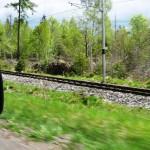 W drodze do Tatranskiej Lomnicy.